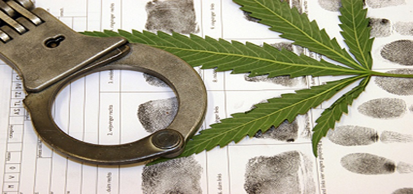 Marijuana DUI Defense Lawyers
